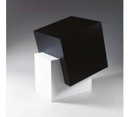 BLACK BOX IN A WHITE CUBE, 2002